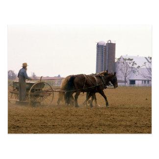 Carte Postale Agriculteur amish employant un planteur
