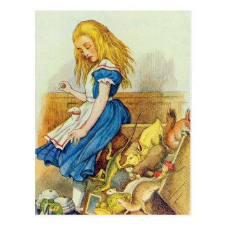 Carte Postale Alice dérange le Jury-Box