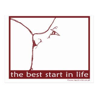 Carte Postale Allaiter - le meilleur début dans la vie