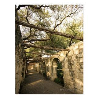 Carte Postale Allée à San Antonio, le Texas