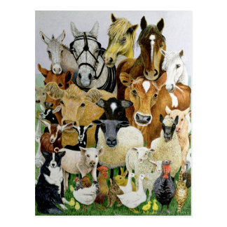 Carte Postale Allsorts animal