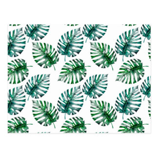 Carte Postale Aloha motif tropical de feuille de Monstera