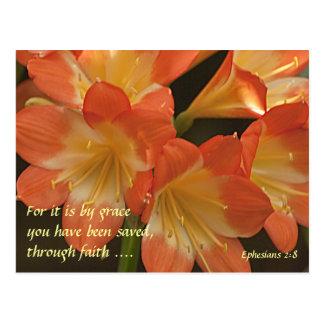 Carte Postale Amaryllis orange