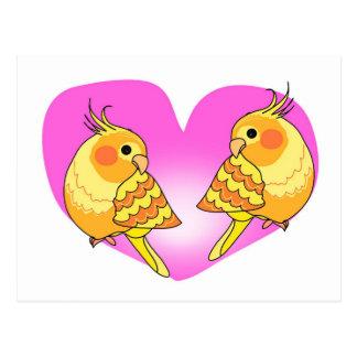 Carte Postale Amour d'oiseau de Cockatiel sur la branche