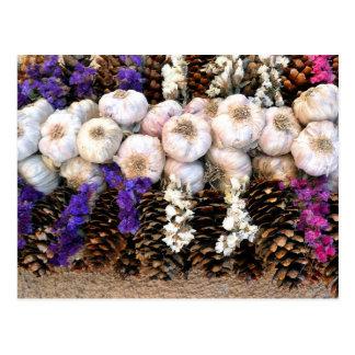 Carte Postale Ampoules d'ail et cônes de pin