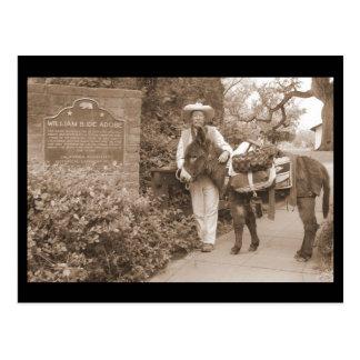 Carte postale ancienne d'âne