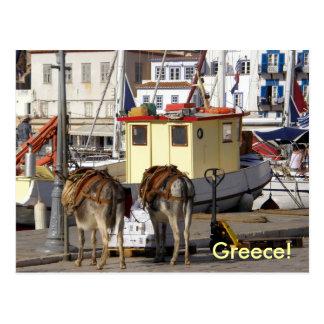 Carte Postale âne sur le quai en Grèce