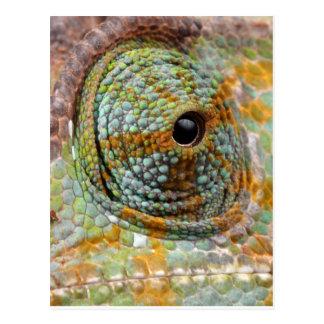 Carte Postale Animal élégant de mod d'oeil de caméléon
