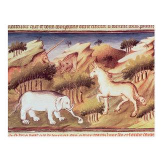 Carte Postale Animaux mythiques dans la région sauvage