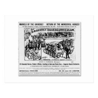 Carte Postale Annonce d'Equescurriculum de D.M. Bristol
