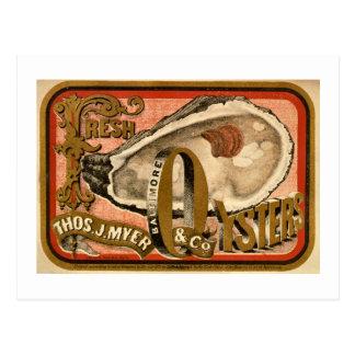 Carte Postale Annonce vintage de Baltimore d'huîtres fraîches