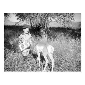 Carte Postale Antilope de alimentation de garçon à la main