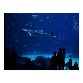 Carte Postale Aquarium, Atlanta la Géorgie