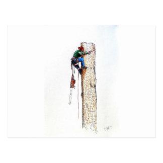 Carte Postale Arboriste Stihl de chirurgien d'arbre