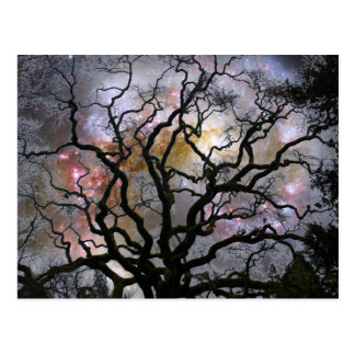 Carte Postale Arbre cosmique - galaxies se heurtantes