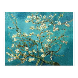Carte Postale Arbre d'amande de floraison - Vincent van Gogh