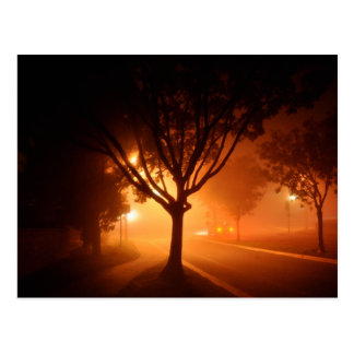 Carte Postale Arbre de mystère de brouillard