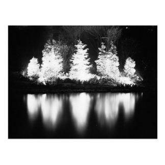 Carte Postale Arbre de Noël noir et blanc