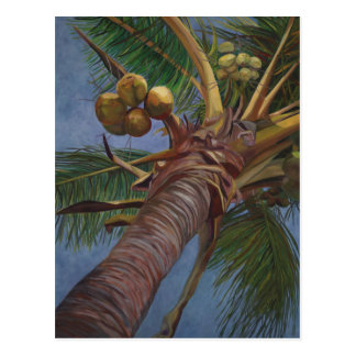Carte Postale Arbre de noix de coco