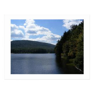 Carte Postale arbres de lac de la Pennsylvanie de parc d'état