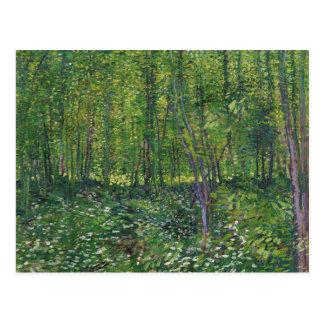Carte Postale Arbres et broussaille de Van Gogh