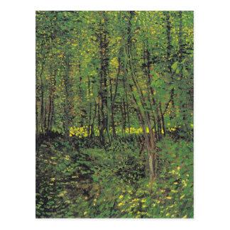 Carte Postale Arbres et broussaille par Van Gogh