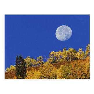 Carte Postale Arrangement de lune au lever de soleil,