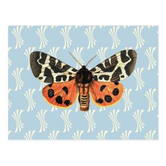 Carte Postale Art de bruit vintage d'illustration de mite