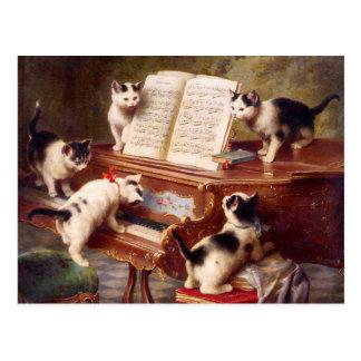 Carte Postale Art de chat : Le considérant du chaton