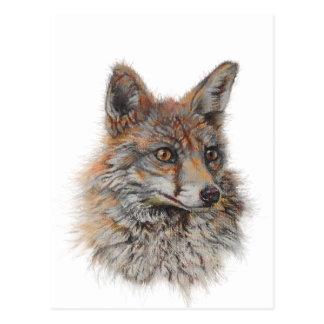 Carte Postale art de visage de renard rouge