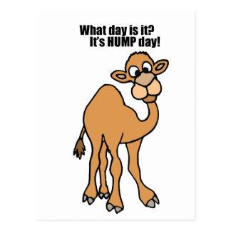 Carte Postale Art drôle de chameau de journée en milieu de