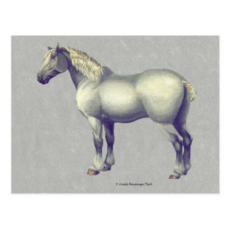 Carte Postale Art équin de cheval de Percheron
