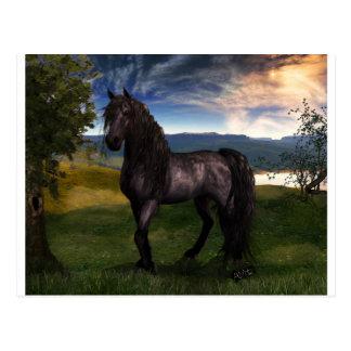 Carte Postale Art frison de coutume de cheval