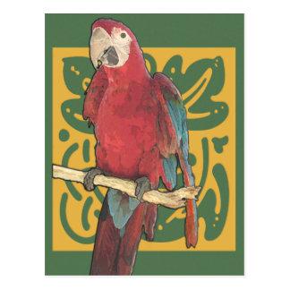 Carte Postale Art Nouveau de perroquet