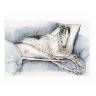 Carte Postale Art Poscard de chien de lévrier de sommeil
