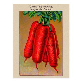 Carte Postale Art rouge de paquet de graine de carotte de
