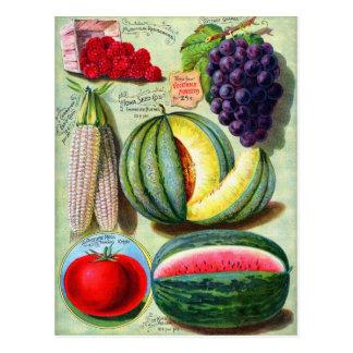 Carte Postale Art vintage de couverture de la graine Co de