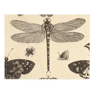 Carte Postale Art vintage de libellule (détail)