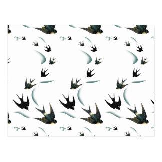Carte Postale Art vintage d'oiseaux d'hirondelle