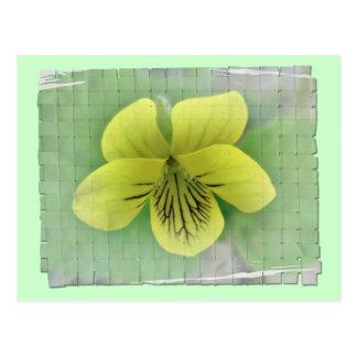 Carte Postale Articles coordonnés violets jaunes sauvages