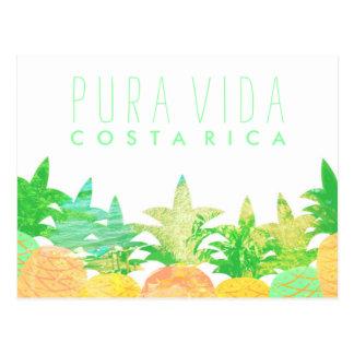 Carte postale artistique du Costa Rica Pura Vida