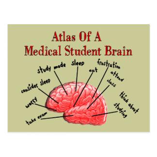 Carte Postale Atlas de cerveau d'étudiant en médecine