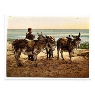 Carte Postale Attendant un travail (ânes), l'Angleterre Photochr