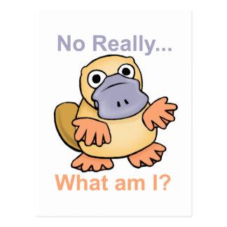 Carte Postale Aucun vraiment… Quel suis-je ? Ornithorynque