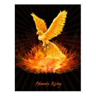 Carte Postale Augmentation de Phoenix