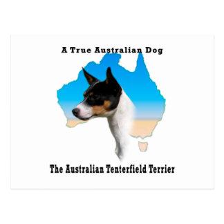 Carte Postale Australien Tenterfield Terrier /Map tricolore