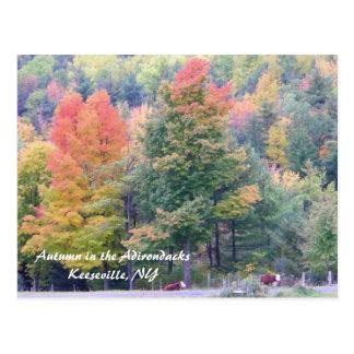 Carte Postale Automne dans l'Adirondacks