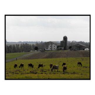 Carte Postale Automne de ~ dans le ~ 44 du comté de Lancaster