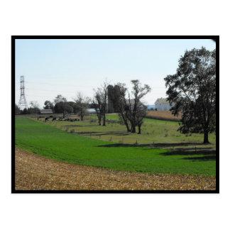 Carte Postale Automne de ~ dans le ~ 53 du comté de Lancaster