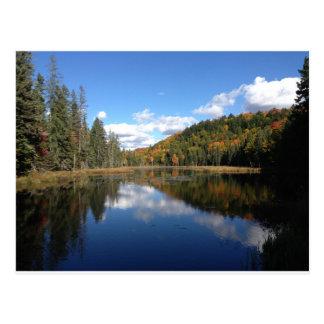 Carte Postale Automne tôt en parc provincial d'algonquin